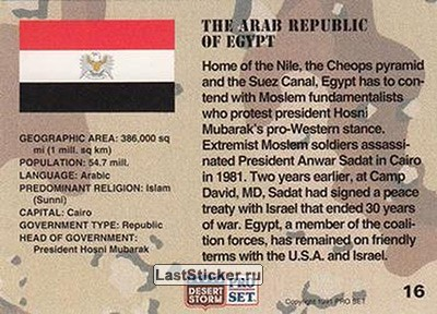 an introduction to the arab republic of egypt Mohammed el sharkawi was detained without trial under egypt's emergency law for el sharkawi v arab republic of egypt letter of introduction filed to the.